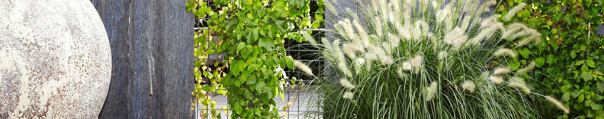 Lassen Sie sich von uns in Ihrer Gartengestaltung inspirieren